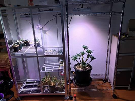 スチールラック温室の作り方