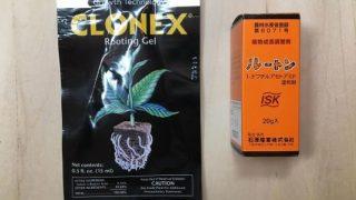 植物ホルモン